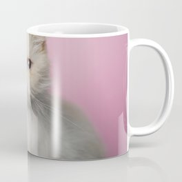 Lord Aries Cat - Photography 008 Coffee Mug