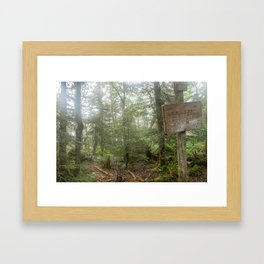 Fraconia ridge trail (AT) Framed Art Print