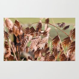 Closeup of brown (dried) plants outdoor Rug