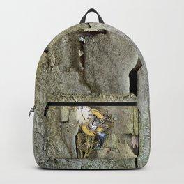 Steampunk letter C Backpack