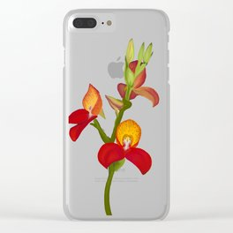 Pride of Table Mountain Disa flower Clear iPhone Case