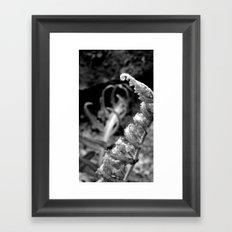The Slow Unfold Framed Art Print