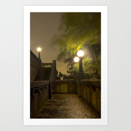 Wild Night Art Print