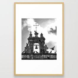 Parque de las Palomas Framed Art Print