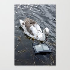 The swan and the tv Canvas Print