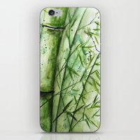bamboo iPhone & iPod Skins featuring Bamboo by rchaem