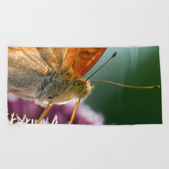 Butterfly macro 67 Beach Towel