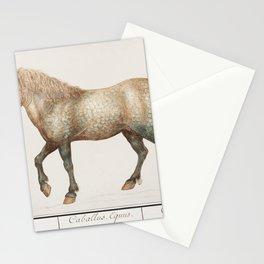 Horse Equus ferus caballus (1596-1610) by Anselmus Botius de Boodt Stationery Cards