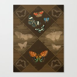Fluttering Beauty Canvas Print