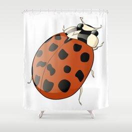 Harmonia axyridus - Asian Ladybeetle Shower Curtain