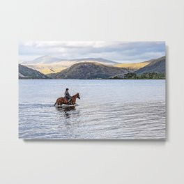 Horse at Airds Bay Loch Etive Metal Print