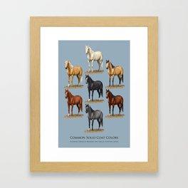 Horse Common Solid Coat Colors Chart Framed Art Print
