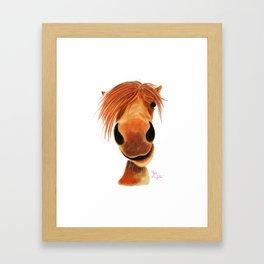 Happy Horse ' GINGER NUT ' by Shirley MacArthur Framed Art Print
