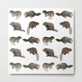 Beaver Pattern Metal Print