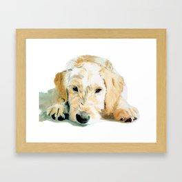 Sleepy Labradoodle Pup Framed Art Print