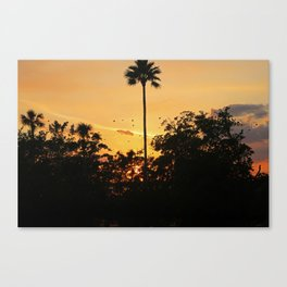 Pause to Rewind Canvas Print