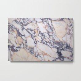 V&A museum pillars marble Metal Print