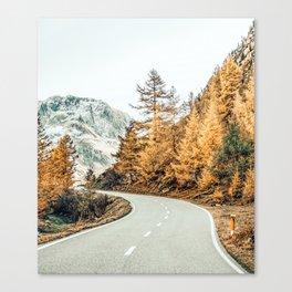 Snow + Golden Pine Canvas Print
