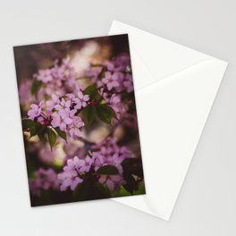 Beauty of Spring IV Stationery Cards