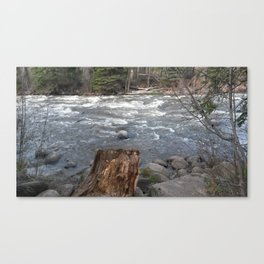 River Banks Canvas Print