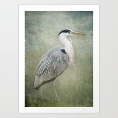 Cool Heron Art Print