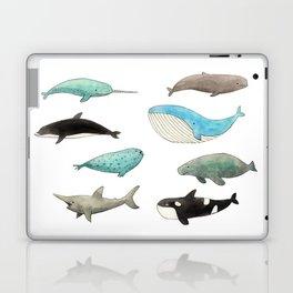 Marine animals Laptop & iPad Skin