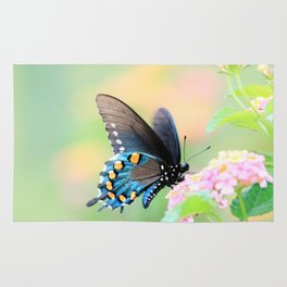 Spicebush Swallowtail Butterfly on Lantana Rug