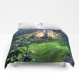 Magic Morning Sunlight Comforters