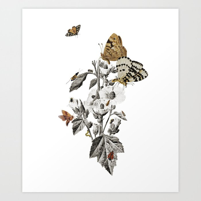 Insect Toile Art Print