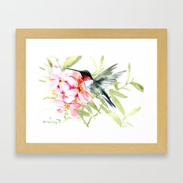 Hummingbird and Plumeria Flowers Framed Art Print