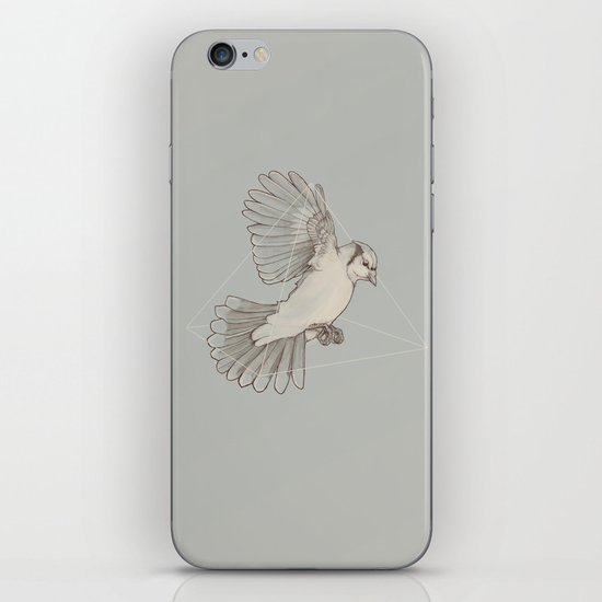 Dynamics of Flight iPhone & iPod Skin
