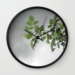 grey on green Wall Clock