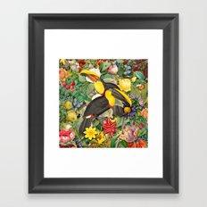 Toucans 2 Framed Art Print