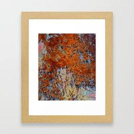 Rusting colour Framed Art Print