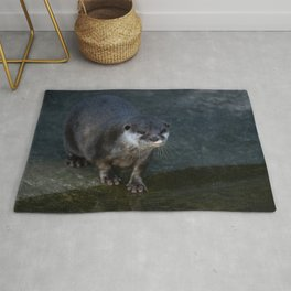 Asian Short Clawed Otter Rug