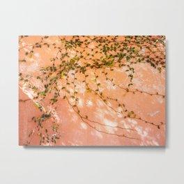 Botanical San Miguel de Allende | Shadow light play Mexico photography | Pastel colors Metal Print