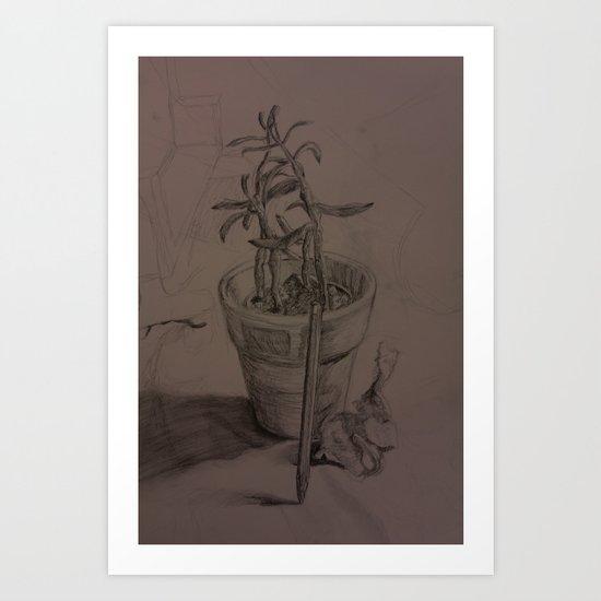Plant Still Life 1 Art Print