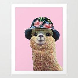 alpaca with bucket hat Art Print