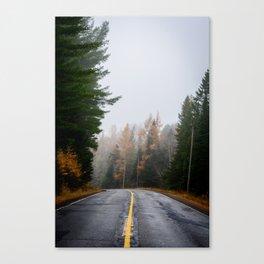 Fog and Fall Colour Canvas Print