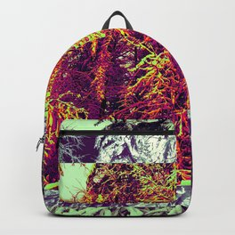 Vermont 2.0 Backpack