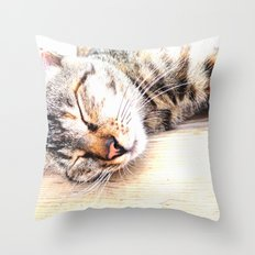 Sleeping Cat Throw Pillow