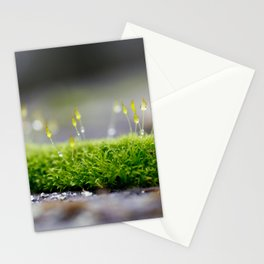 Mossy Moss Stationery Cards