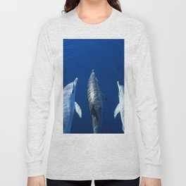 Playful and friendly dolphins Long Sleeve T-shirt
