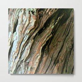 Old Olive tree weathered wood Metal Print