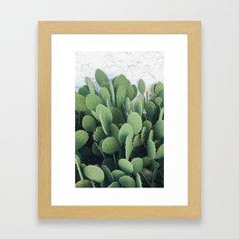 Cactus Cacti Green Desert Framed Art Print