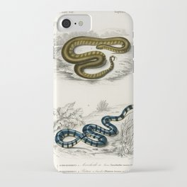 Elephant trunk snake (Acrochordus Javanicus) and Columbrine Sea Krait (Platurus Fasciatus) illustrat iPhone Case