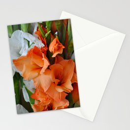 Orange and white gladiolas Stationery Cards