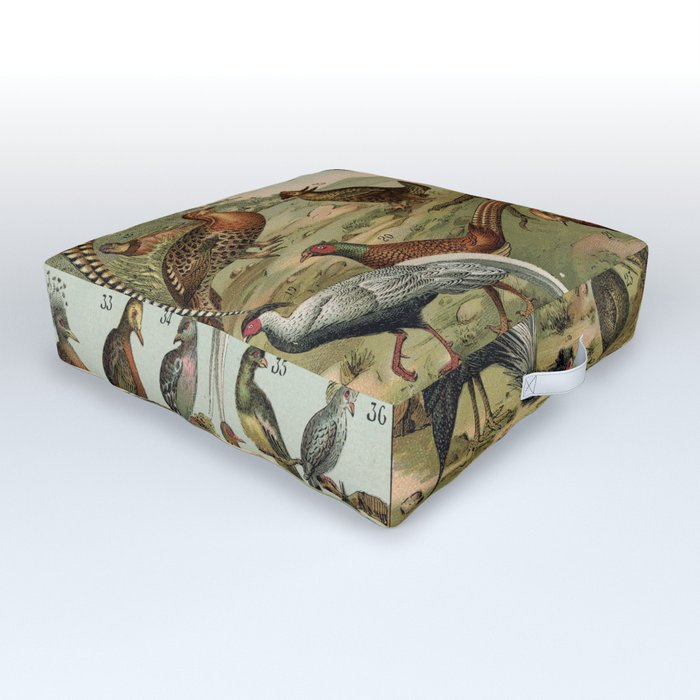 Birds of the World Outdoor Floor Cushion