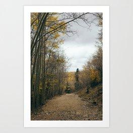 Aspen 2 Art Print