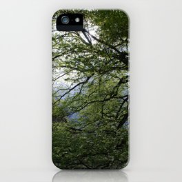 Before the Rain iPhone Case
